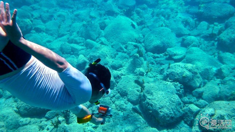 壁纸 海底 海底世界 海洋馆 水族馆 桌面 960_540