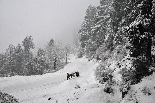 【去他的摄影】让雪花飘:世界各地的冬天