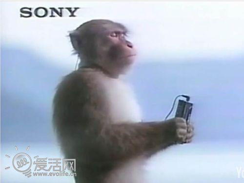 索尼Walkman: 人性文化和科技的双面原声带