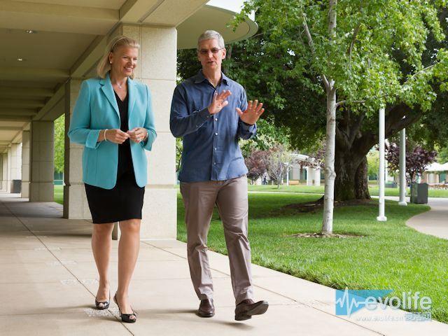 烧微软后院 苹果与IBM合作正式进驻企业市场