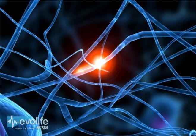 【新技术研习社】深远的革命 IBM超级神经元芯片要用沙子模拟人脑