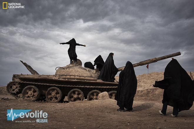 【去他的摄影】2015国家地理读者优秀摄影作品赏