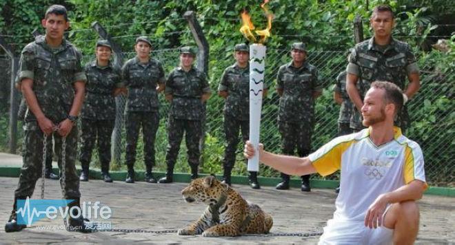 在这个危机四伏的夏天 我们和里约奥运会到底约不约?